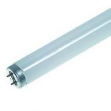 Лампа люминисцентная (30 шт.) OSRAM ЛД-20