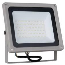 Прожектор светодиодный 50 Вт 6500 К IP65 FL LED Elektrostandard а037413